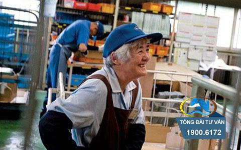 người lao động cao tuổi