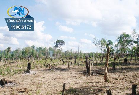 Đất phi nông nghiệp