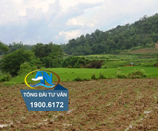 Bị thu hồi đất nông nghiệp
