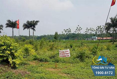 đất khai hoang thuộc quy hoạch sử dụng đất