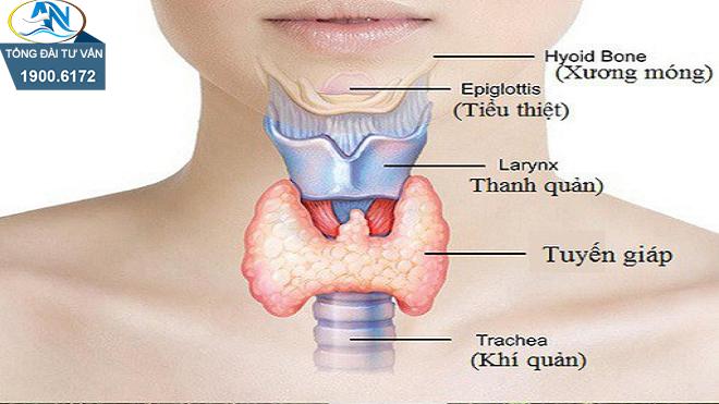 Mức hưởng BHYT khi bị ung thư tuyến giáp